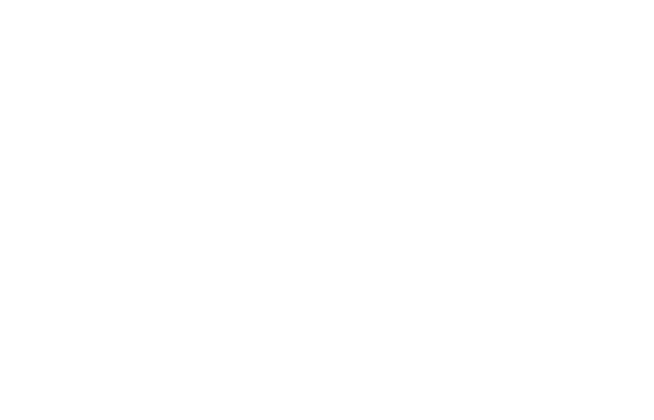 Richard Johnson Lecture